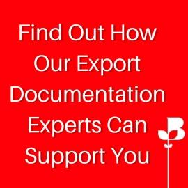 Find Out HowOur ExportDocumentaionExperts CanSupport You 1